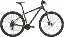 Велосипед Cannondale Trail 8 29 L 2020 (графит)